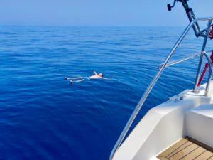 купание на глубине