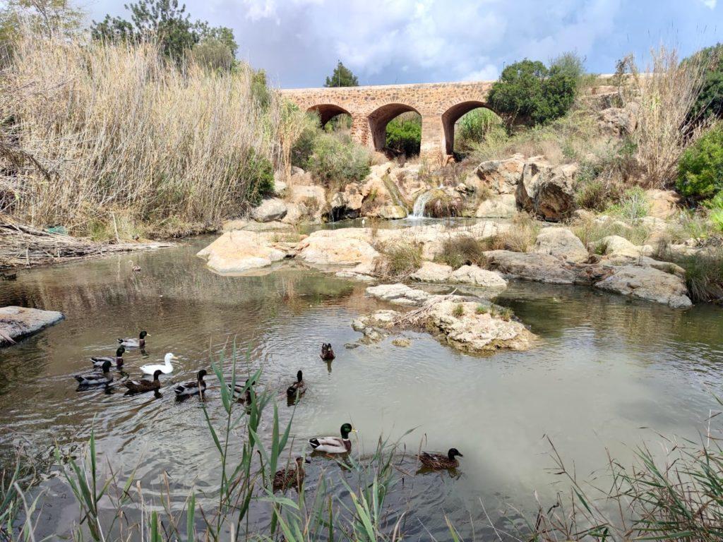 Санта Эулалия мост через реку